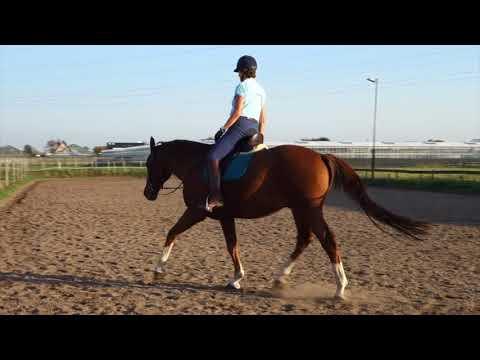 Art2Ride Associate Trainer Program: Yvon and Wilco: Riding