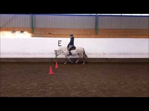 Video Critique by Art2Ride Associate Trainer Anne Saari: Miriam and Lady Submission 4