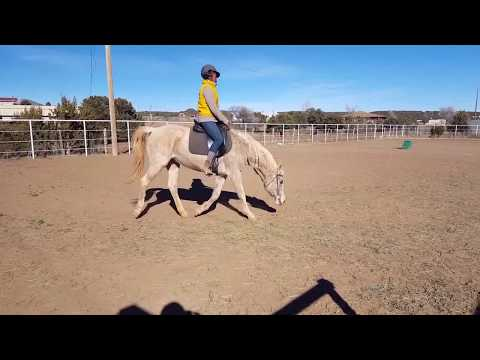 Art2Ride Associate Trainer Program: Ryanne Davis and Ariel Submission 1